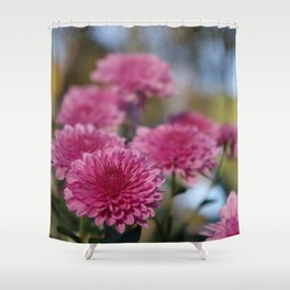 Rosy Chrysanthemum with gold leaves, blue sky Shower Curtain