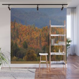 Fall colors huddled together.... Wall Mural