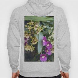 Longwood Gardens Orchid Extravaganza 67 Hoody