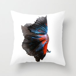 Multi-color betta fish, siamese fighting fish isolated on white background Throw Pillow