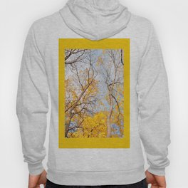 Yellow autumn leaves on trees in park Hoody