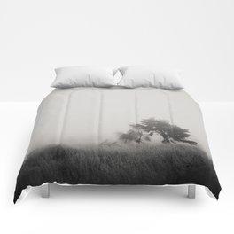 the fog ... Comforters