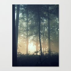 Find Serenity Canvas Print