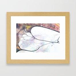 Fossils 45 Framed Art Print