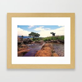 """Mac Mac Pools"" by ICA PAVON Framed Art Print"