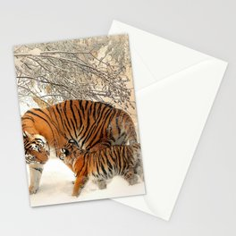 Tiger_2015_0126 Stationery Cards
