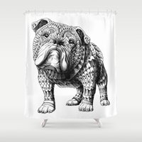 english bulldog Shower Curtains featuring English Bulldog by BIOWORKZ