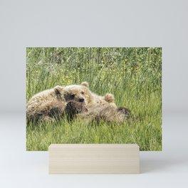 Counting Salmon - Bear Cubs, No. 3 Mini Art Print