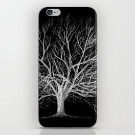 Walnut tree iPhone Skin