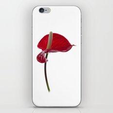 Anthurium - 2 iPhone & iPod Skin