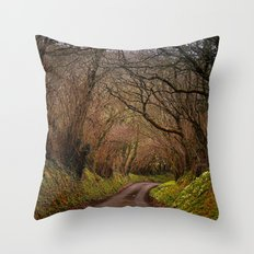country way Throw Pillow