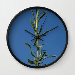 Rosemary Wall Clock