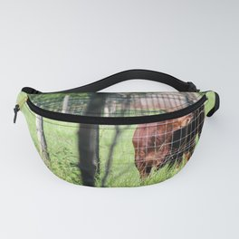 Cow Beyond the Fence Fanny Pack