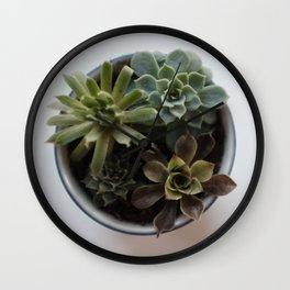 Succulents in Classic Chrome 02 Wall Clock