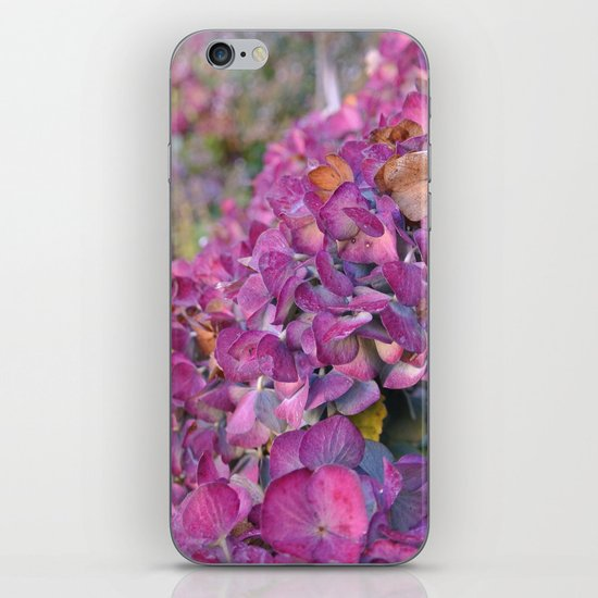 Autumn Flowers iPhone & iPod Skin