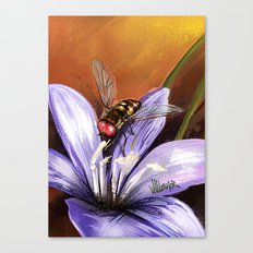 Fly on flower 10 Canvas Print