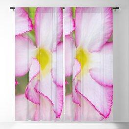 Mekong Flora Blackout Curtain