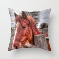 pony Throw Pillows featuring Pony  by Darren Wilkes Fine Art Images