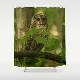 Beautiful Barred Owl Mother Shower Curtain