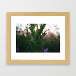 Stå opp Framed Art Print