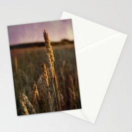 Oat crop close-up vintage photo Stationery Cards