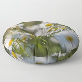 Daisies meadow in the summer Floor Pillow