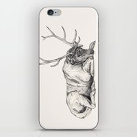 stag iPhone & iPod Skins featuring Stag // Graphite by Sandra Dieckmann