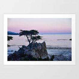 Lone Cypress at Sunset Art Print