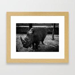 RINO Framed Art Print