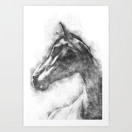 Horse Pen drawing Art Print