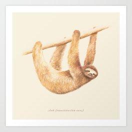 Css Animal: Sloth Art Print