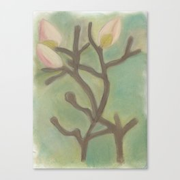 Subdued Magnolia Floral Canvas Print