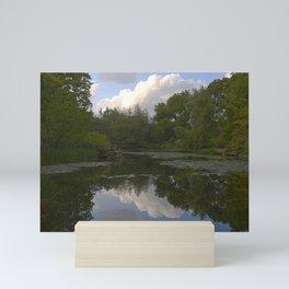 Lincoln Park Lily Pond Mini Art Print