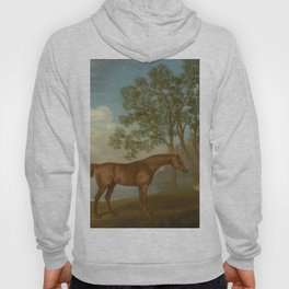 George Stubbs - Pumpkin with a Stable-lad Hoody