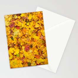 Autumn leaves   Nature Photography Stationery Cards