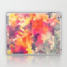 Summer Garden 4 Laptop & iPad Skin