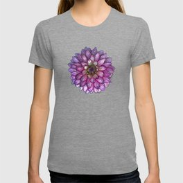 Dahlia Purple & White with water droplets T-shirt