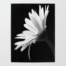 Flower BW Poster