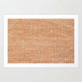 Beautiful cloth texture. Vintage fabric, denim, wool, tartan, ... 111 Art Print
