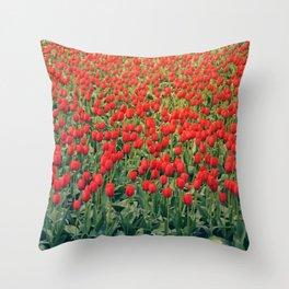 Tulips field #2 Throw Pillow