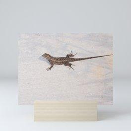 Heat-Loving Lizard Mini Art Print