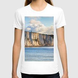 Cretaceous rocks of Dover T-shirt