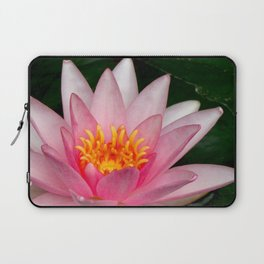 Pink Water Lily Laptop Sleeve