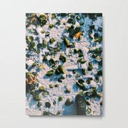 FALLen LEAFes Metal Print