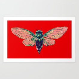 17 Year Cicada Art Print