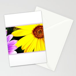 Lilac and yellow osteospermum Stationery Cards