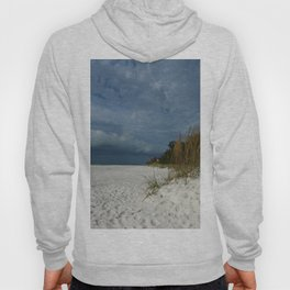 Winter Beauty at The Beachside Hoody