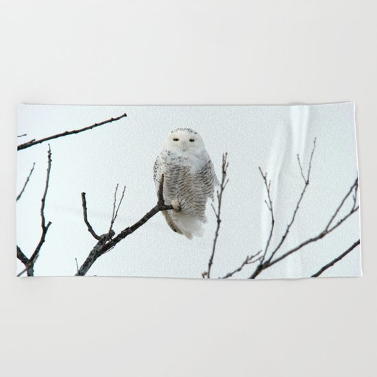 Snowy in the Wind (square) Beach Towel