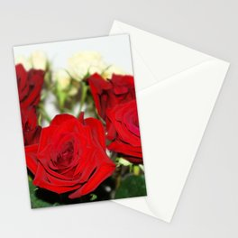 Red and yellow roses Stationery Cards