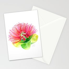 Red Flower / Ohia Lehua Stationery Cards